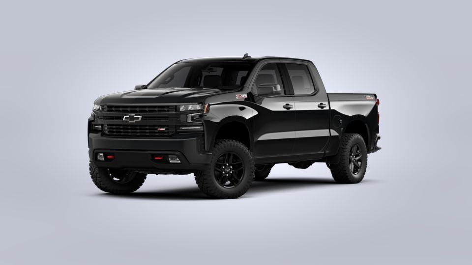 2020 Chevrolet Silverado 1500 Vehicle Photo in Lowell, IN 46356