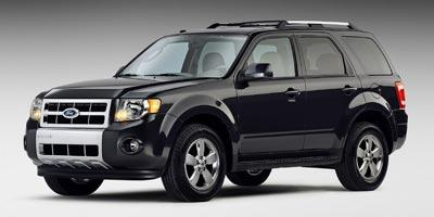 2009 Ford Escape Vehicle Photo in Boston, NY 14025