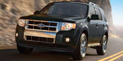 2010 Ford Escape Vehicle Photo in Kansas City, MO 64114