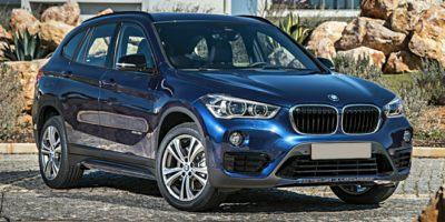 2019 BMW X1 sDrive28i Vehicle Photo in Charleston, SC 29407