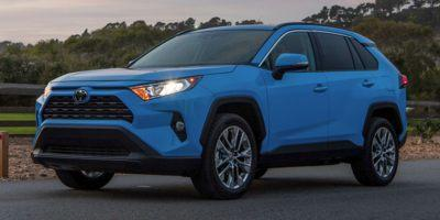 2019 Toyota RAV4 Vehicle Photo in Fayetteville, NC 28314