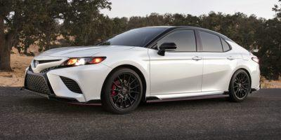 2020 Toyota Camry Vehicle Photo in Trinidad, CO 81082
