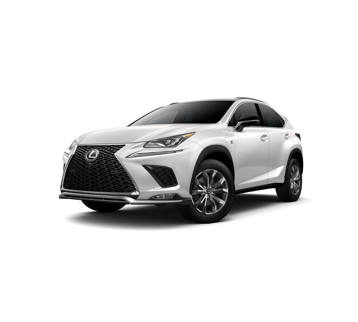 2018 Lexus NX 300 Vehicle Photo in Houston, TX 77546