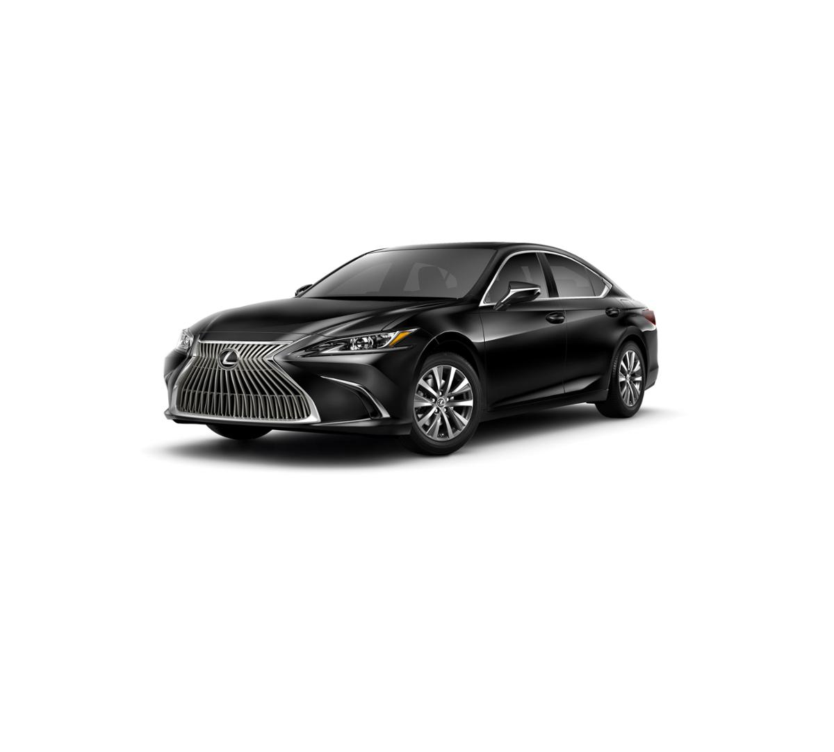 2019 Lexus ES 350 Vehicle Photo in Houston, TX 77546