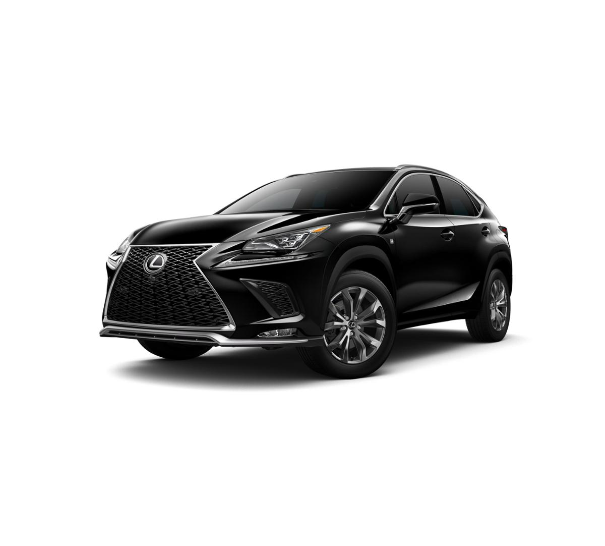 2019 Lexus NX 300 Vehicle Photo in Henderson, NV 89011