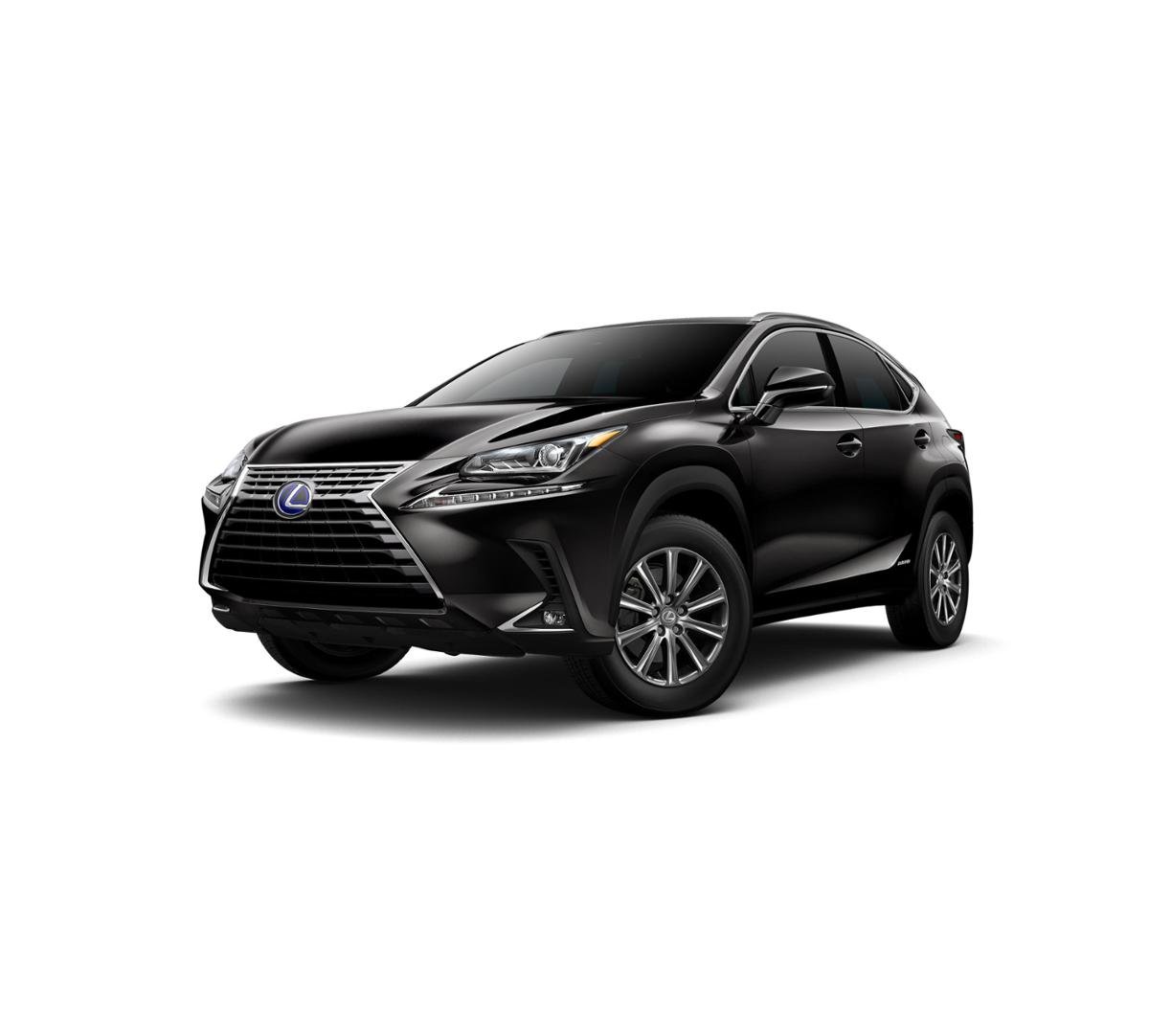 2019 Lexus NX 300h Vehicle Photo in Springfield, MO 65809