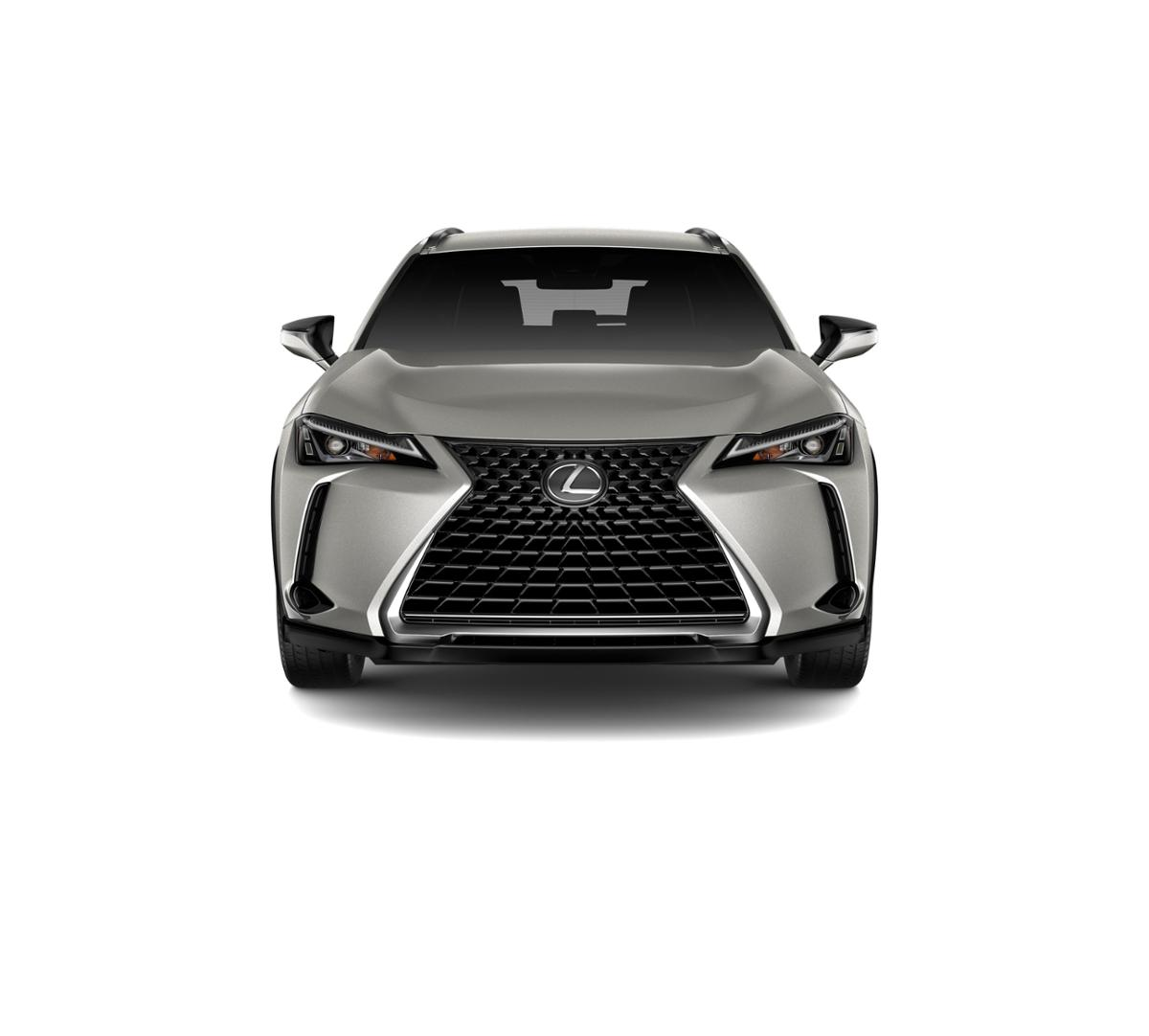 2019 Lexus UX 200 Vehicle Photo in Houston, TX 77074