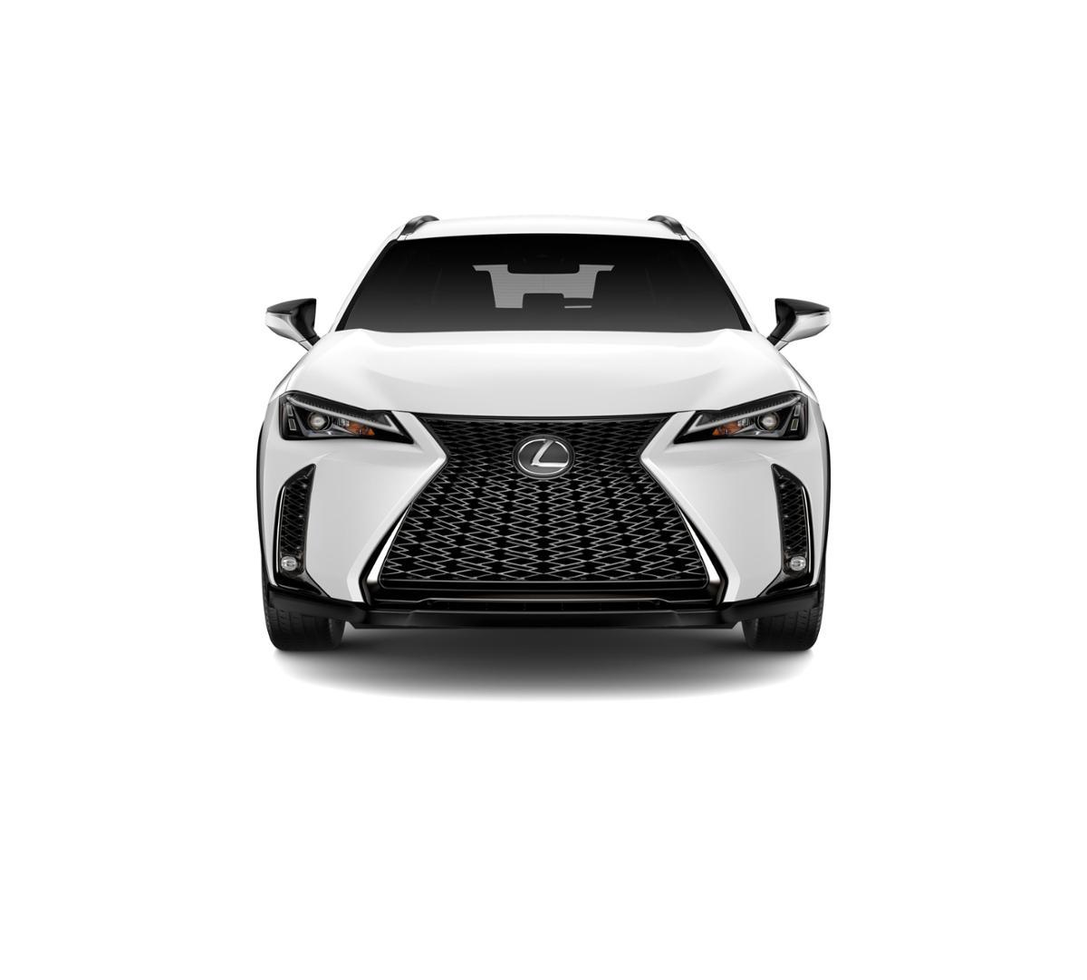 2019 Lexus UX 200 Vehicle Photo in Houston, TX 77546