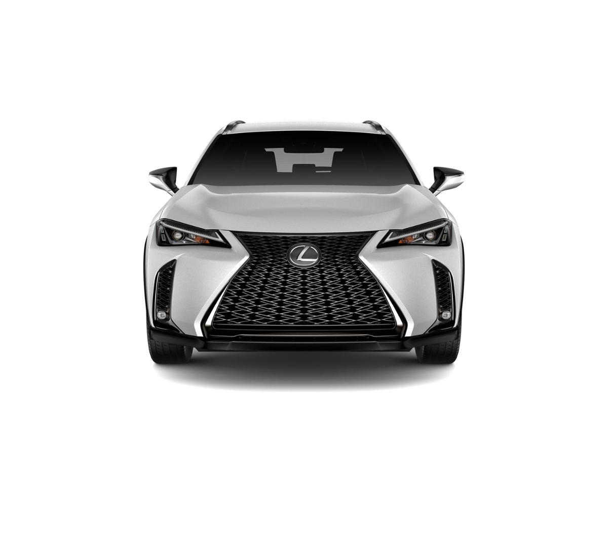 2019 Lexus UX 200 Vehicle Photo in Dallas, TX 75209