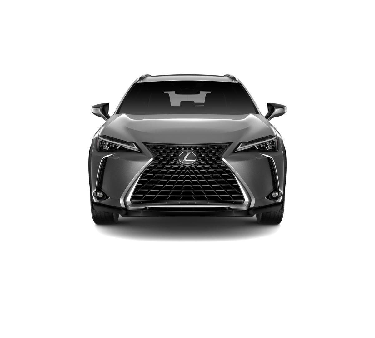 2019 Lexus UX 200 Vehicle Photo in Houston, TX 77074