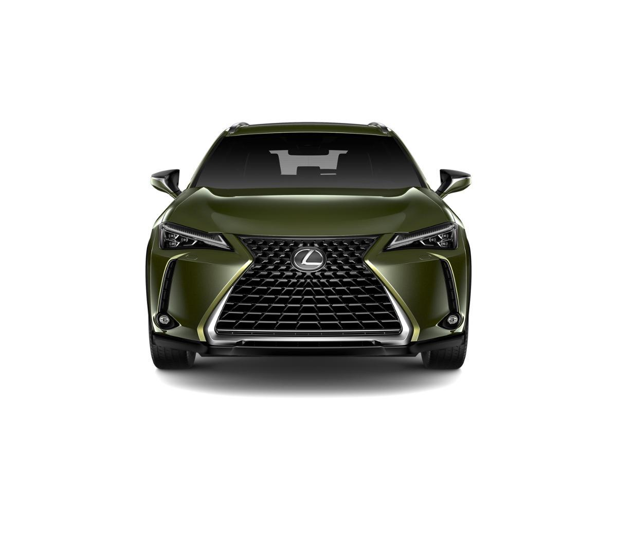 2019 Lexus UX 200 Vehicle Photo in Danvers, MA 01923