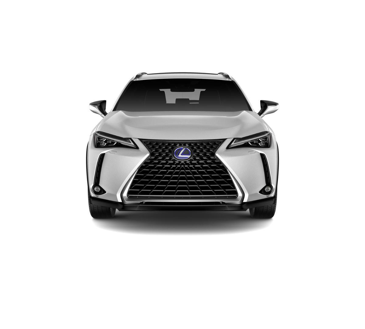 2019 Lexus UX 250h Vehicle Photo in Larchmont, NY 10538