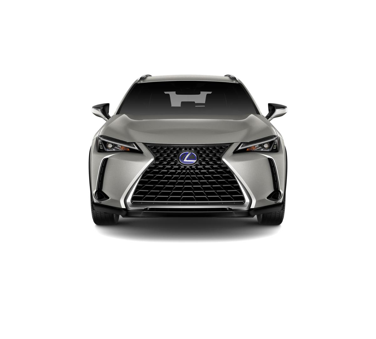 2019 Lexus UX 250h Vehicle Photo in El Monte, CA 91731