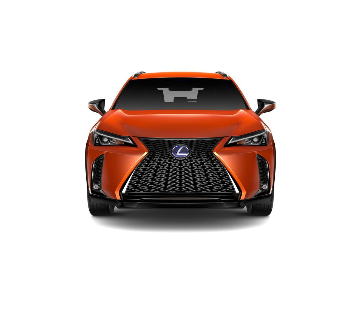 2019 Lexus UX 250h Vehicle Photo in Danvers, MA 01923