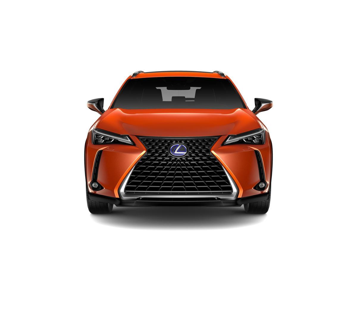 2019 Lexus UX 250h Vehicle Photo in Houston, TX 77546