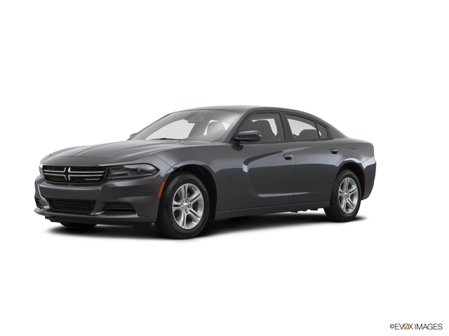 2015 Dodge Charger Vehicle Photo in Oak Lawn, IL 60453