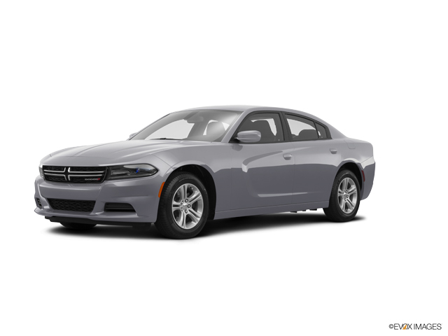 2015 Dodge Charger Vehicle Photo in San Antonio, TX 78257