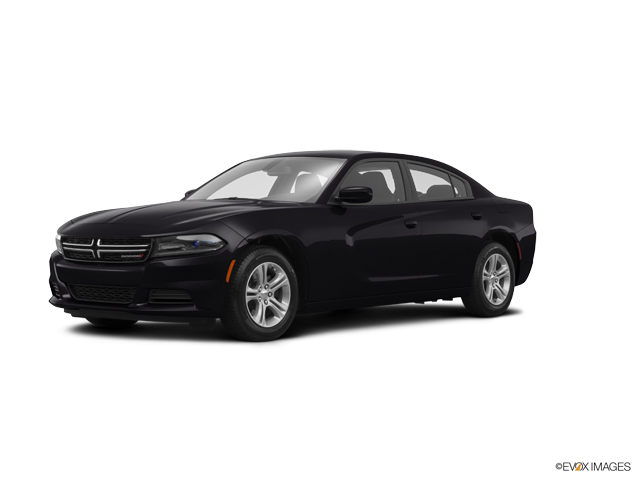 2015 Dodge Charger Vehicle Photo in San Leandro, CA 94577