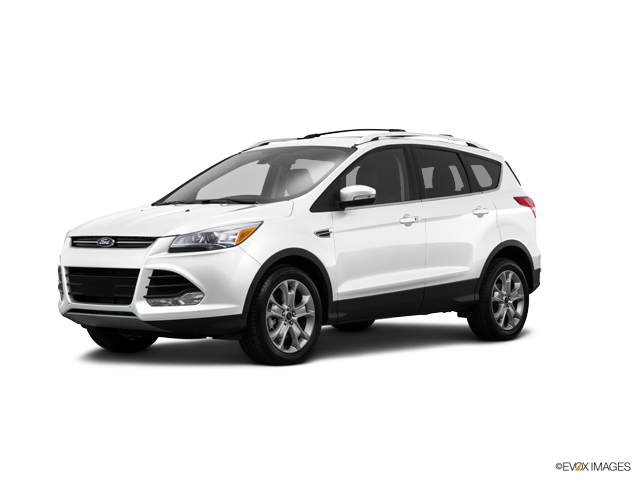 2015 Ford Escape Vehicle Photo in Warren, OH 44483