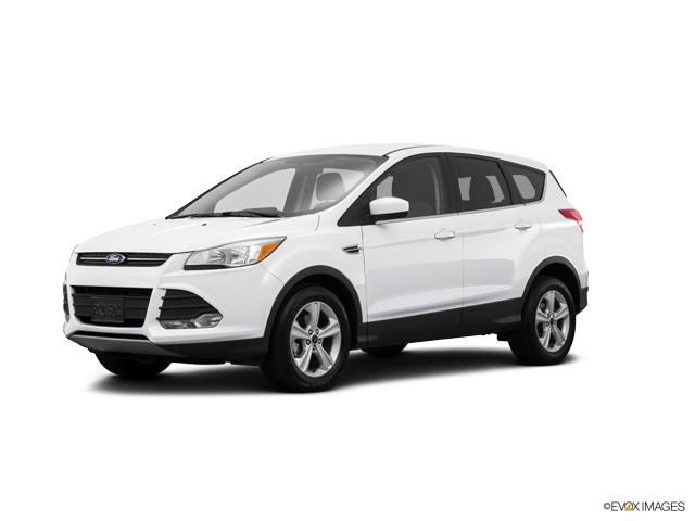 2015 Ford Escape Vehicle Photo in Ocala, FL 34474