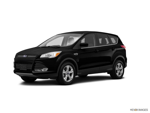 2015 Ford Escape Vehicle Photo in Salem, VA 24153