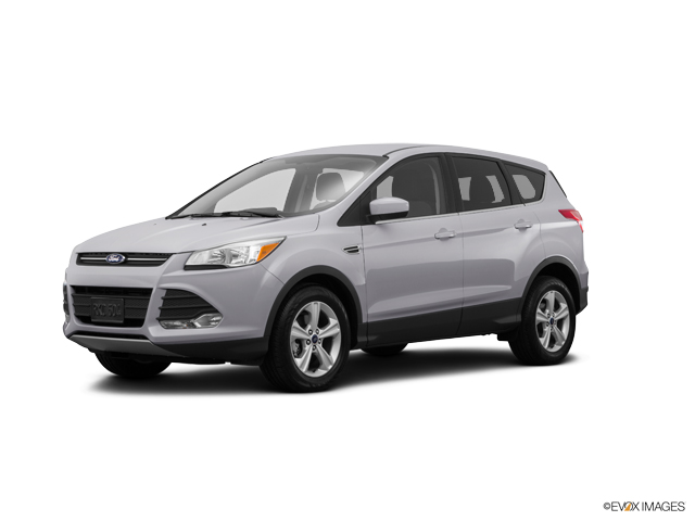 2015 Ford Escape Vehicle Photo in Naples, FL 34109