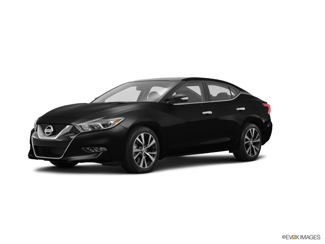 2016 Nissan Maxima Vehicle Photo in Salem, VA 24153