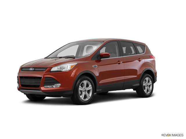 2016 Ford Escape Vehicle Photo in New Hampton, NY 10958