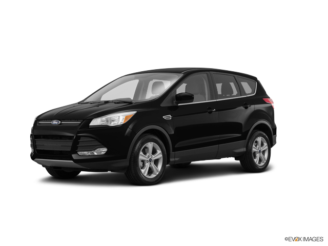 2016 Ford Escape Vehicle Photo in Mukwonago, WI 53149