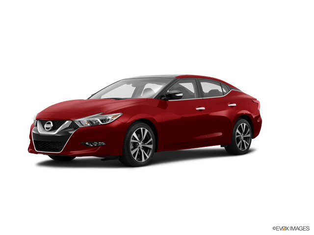 2016 Nissan Maxima Vehicle Photo in Albuquerque, NM 87114