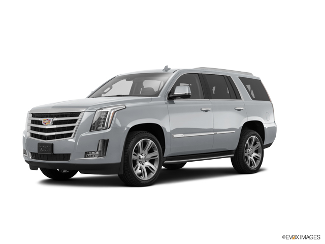 2016 Cadillac Escalade Vehicle Photo in West Chester, PA 19382