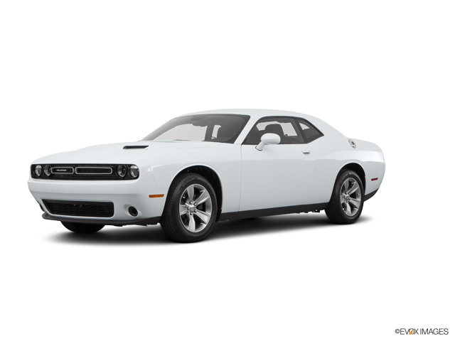 2016 Dodge Challenger Vehicle Photo in Columbia, TN 38401