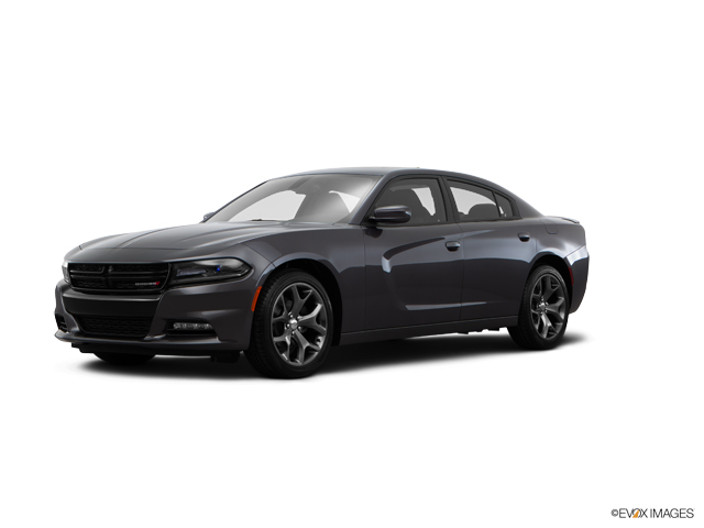 2016 Dodge Charger Vehicle Photo in San Antonio, TX 78254