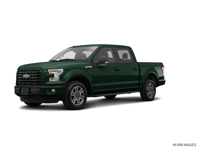 2016 Ford F-150 Vehicle Photo in Newark, DE 19711
