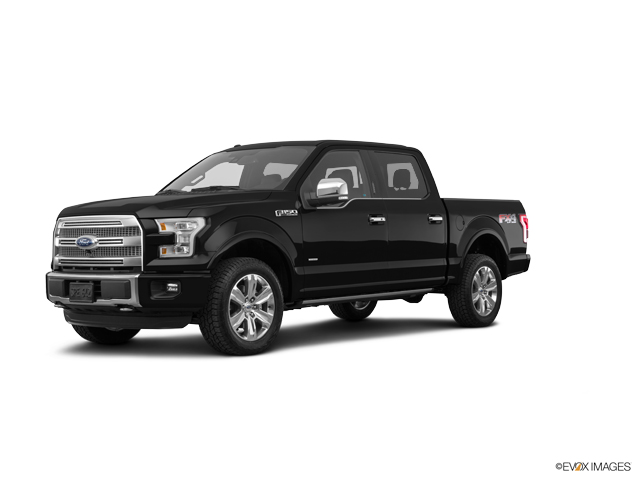 2016 Ford F-150 Vehicle Photo in Gainesville, TX 76240