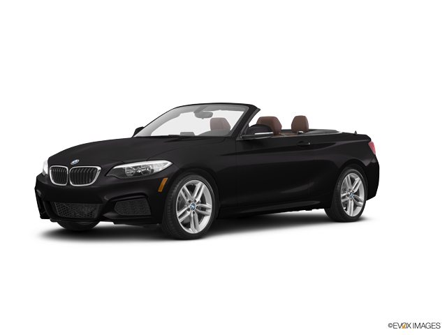 2016 BMW 228i Vehicle Photo in Charleston, SC 29407