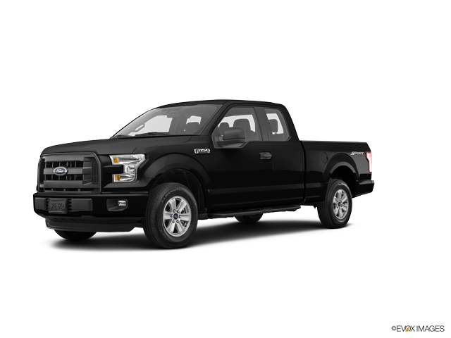 2016 Ford F-150 Vehicle Photo in Emporia, VA 23847