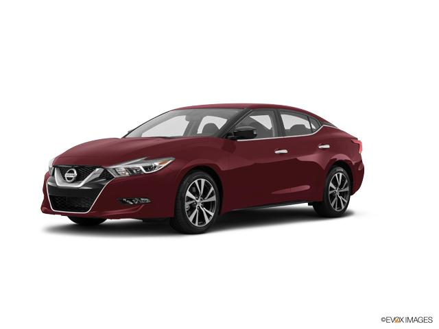 2017 Nissan Maxima Vehicle Photo in Darlington, SC 29532