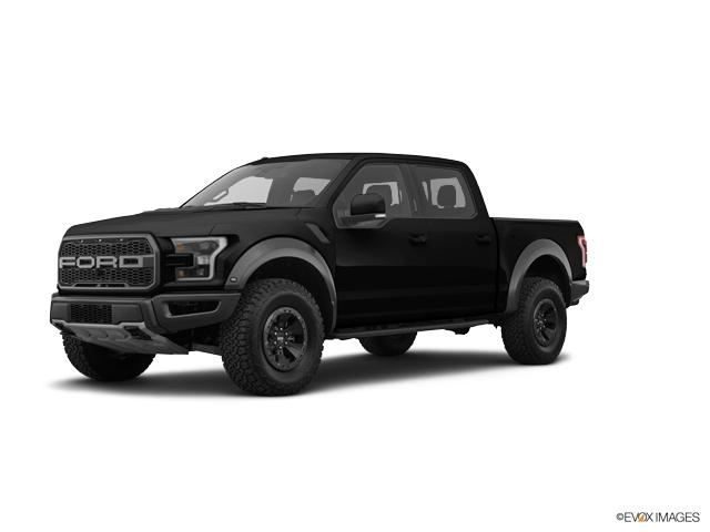 2017 Ford F-150 Vehicle Photo in Macedon, NY 14502