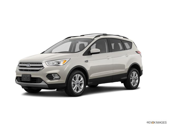 2018 Ford Escape Vehicle Photo in Edinburg, TX 78539