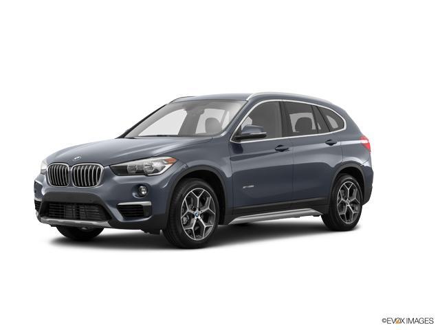 2018 BMW X1 xDrive28i Vehicle Photo in Charleston, SC 29407