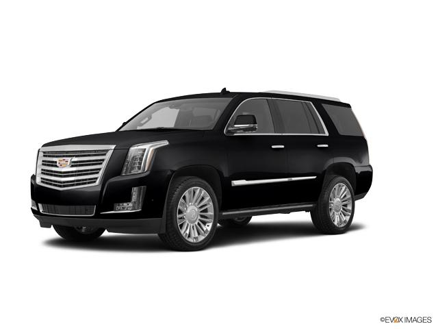 2018 Cadillac Escalade Vehicle Photo in Gainesville, GA 30504