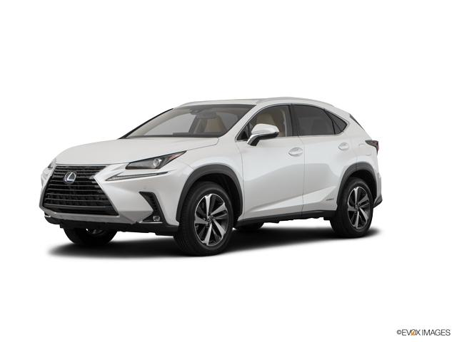 2019 Lexus NX 300h Vehicle Photo in Fort Worth, TX 76132