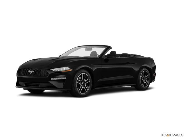 2019 Ford Mustang Vehicle Photo in Akron, OH 44320