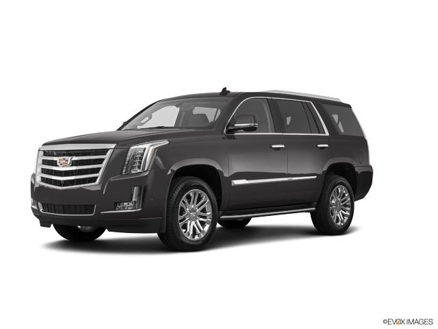 2019 Cadillac Escalade Vehicle Photo in Ellwood City, PA 16117