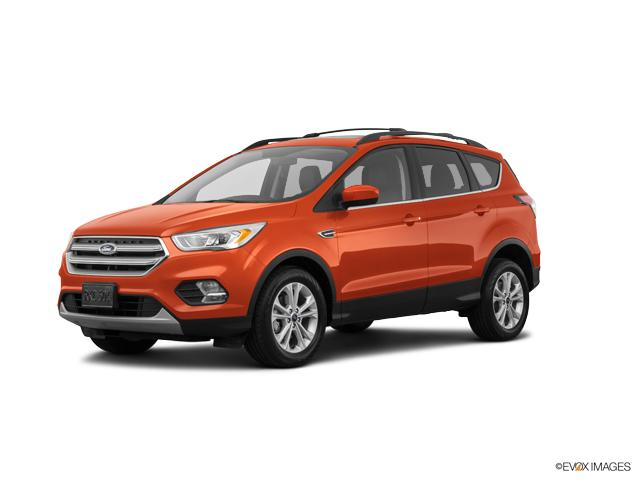 2019 Ford Escape Vehicle Photo in Colorado Springs, CO 80920
