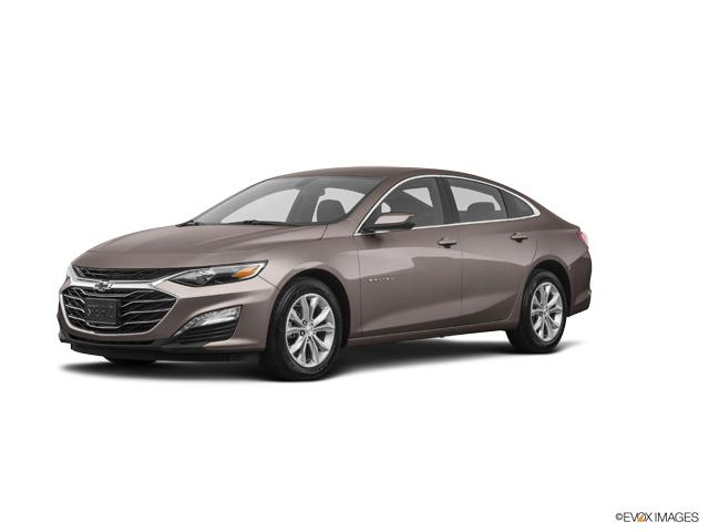 2019 Chevrolet Malibu Vehicle Photo in North Charleston, SC 29406