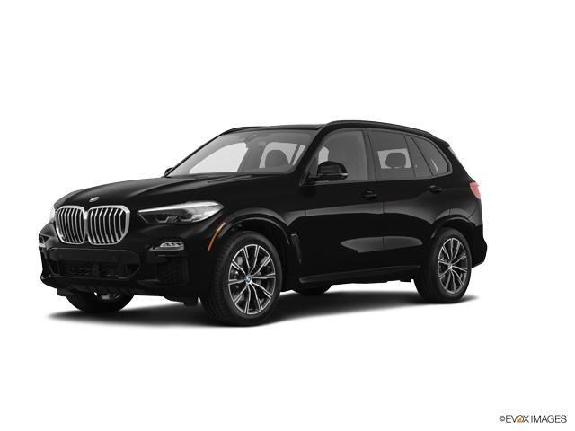 2019 BMW X5 xDrive40i Vehicle Photo in Appleton, WI 54913