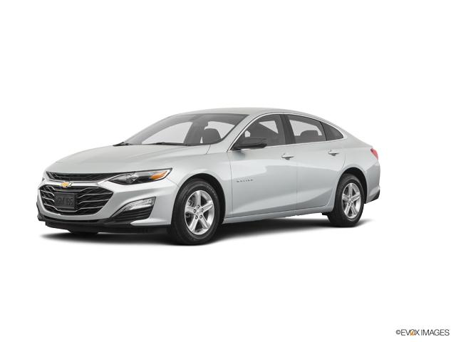 2019 Chevrolet Malibu Vehicle Photo in Washington, NJ 07882