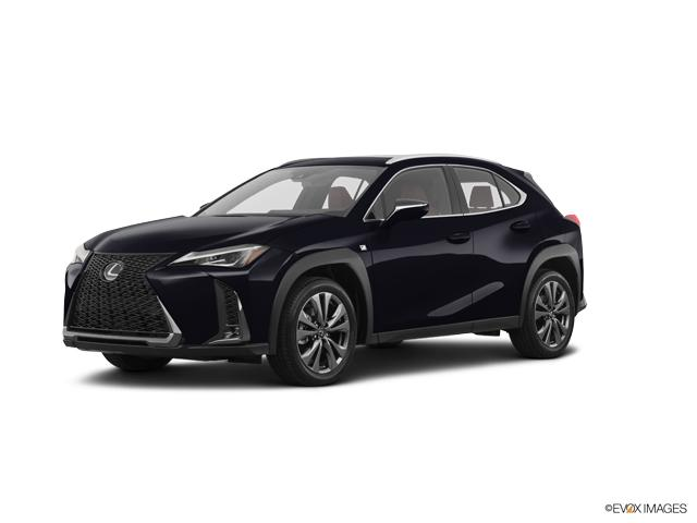 2019 Lexus UX 200 Vehicle Photo in Fort Worth, TX 76132